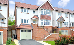 Camomile Way, Newton Abbot, Devon, TQ12 photo