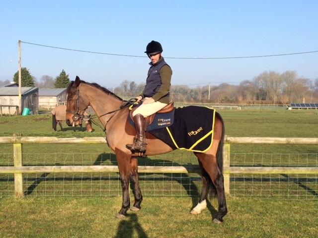 Harry Race Horse
