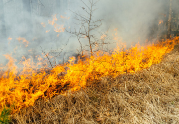 UK heat wave causes fires around the county