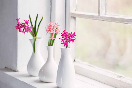 Our top tips to selling your home in the Spring