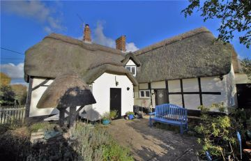 Delightful Thatched Cottage